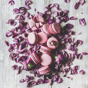 Sweet macaron cookies heap and rose petals square crop