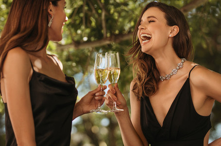 Women in party toasting drinks and laughing