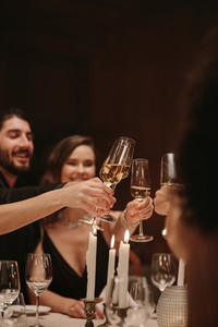 High society people toasting drinks at a dinner party