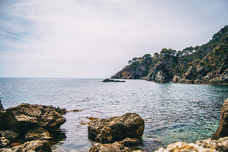 An abrupt rocky cliff full of trees in the mediterranean sea
