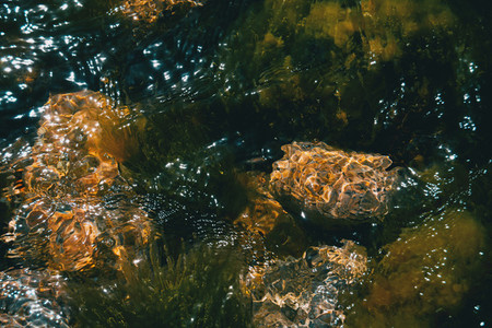 Detail of some rocks under the sea with light reflections on the surface of the water