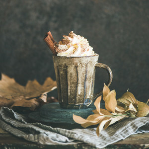Hot chocolate with whipped cream and cinnamon  square crop