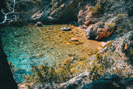 Seascape of a cove with crystalline shallow waters surrounded by vegetation and a rocky wall