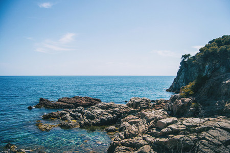 Seascape of an abrupt rocky coast with a cliff covered in vegetation