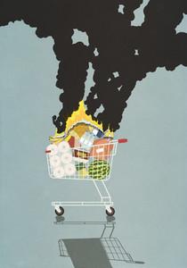 Groceries burning in shopping cart