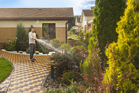 Man watering garden plants and trees with hose in sunny backyard