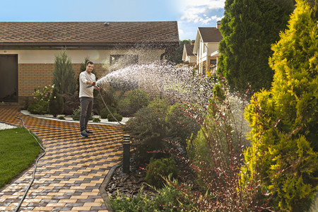 Man watering plants and trees with hose in sunny backyard garden