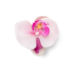 Cut Flower 6
