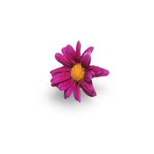 Cut Flower 8