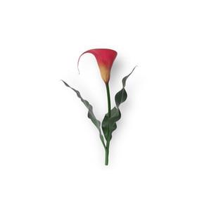 Cut Flower 10