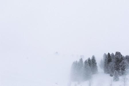 Swiss Alps 8