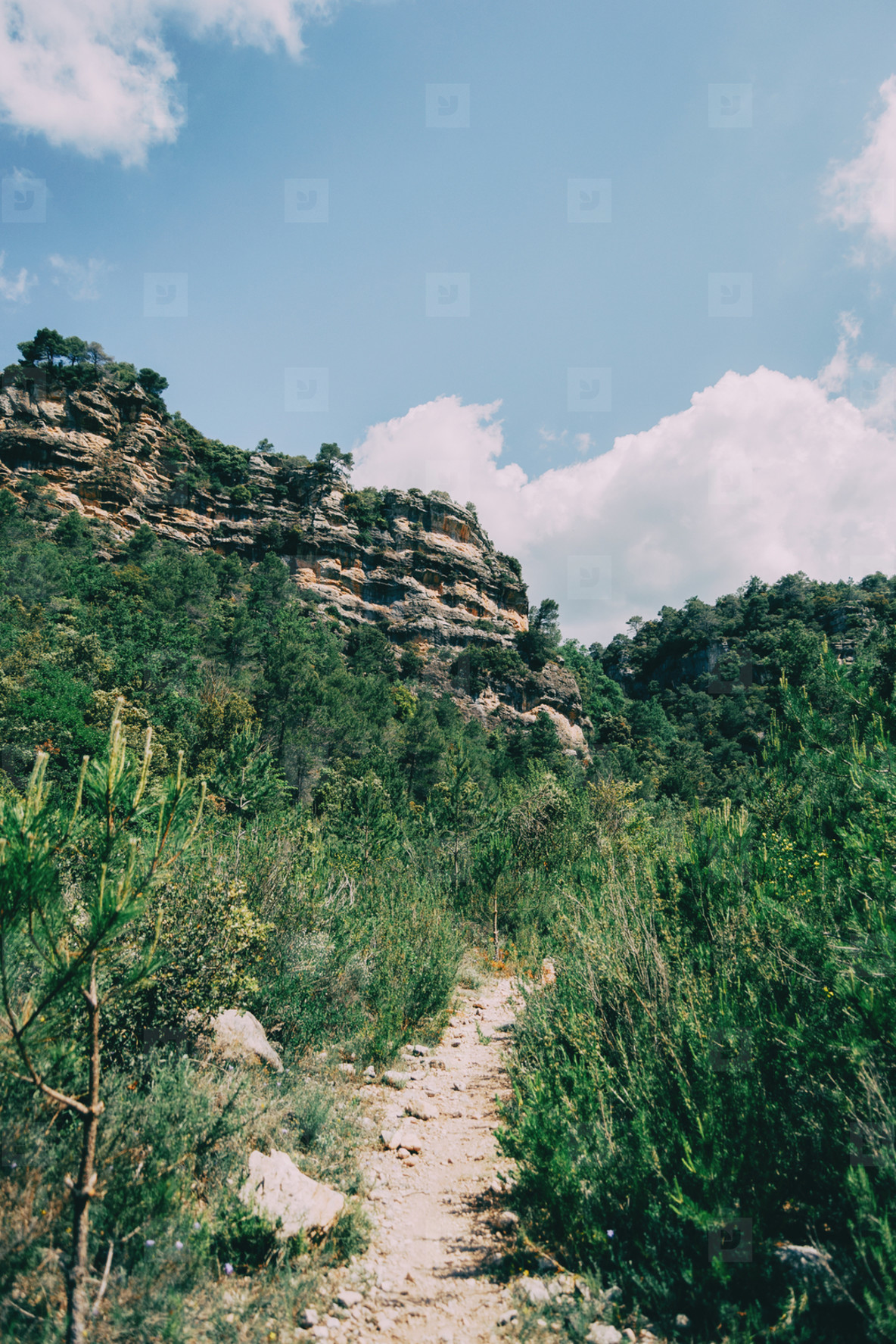 Small path in the mountain of Prades  Tarragona  Spain