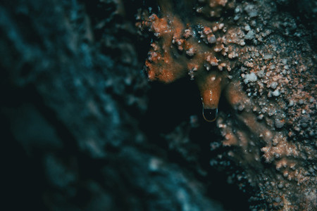 abstract texture of wet stone from inside cave