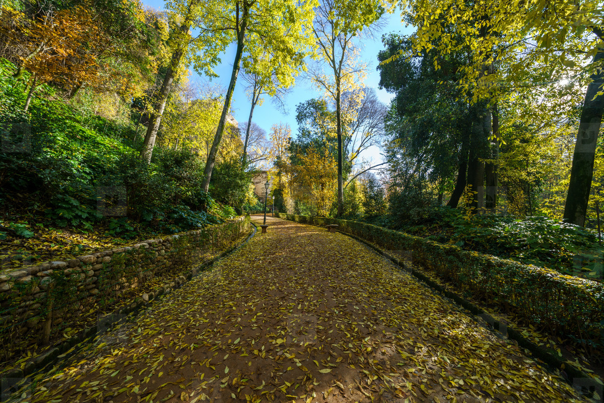 Cuesta de Gomerez in autumn this road takes you to the Alhambra complex