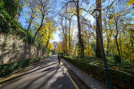 Granada  Spain  December 13th 2020  Cuesta de Gomerez in autumn this road takes you to the Alhambra complex