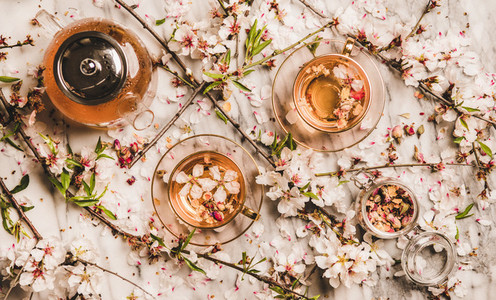 Flat lay black tea with dry rose flowers over blossom branches