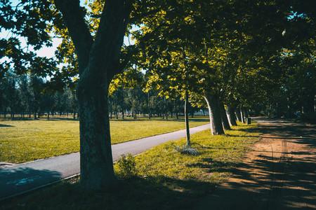 wooded path around lake banyoles spain