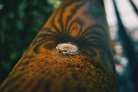 round wooden plank