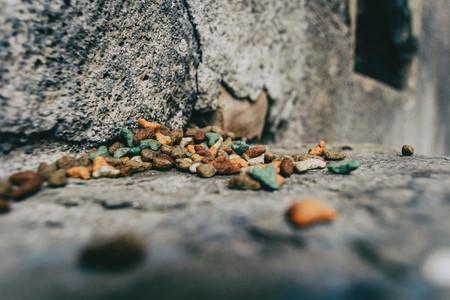 cat food in a corner of a street