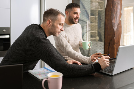 Gay couple working together at home with their laptops