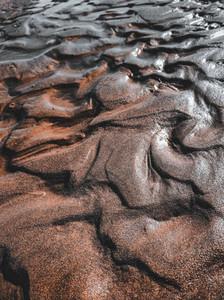 Close up of beach dunes