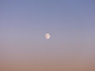 Near full moon in tranquil dusk sky