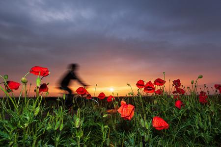 BANOVO POLJE SERBIA   A magical sunset after a spring storm