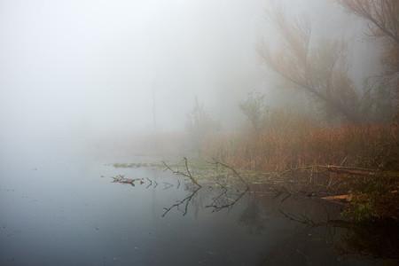 ZASAVICA  SERBIA   Heavy autumn fog over the Zasavica river