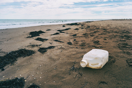 large plastic bottle washed up on a beach