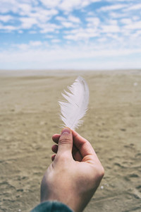 boy fingers holding a white feather of a bird