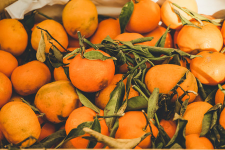 Valencia  Spain  delicious seasonal clementines