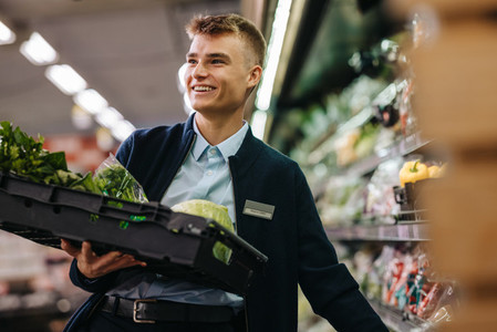 Trainee stocking up fresh vegetables on shelf in supermarket