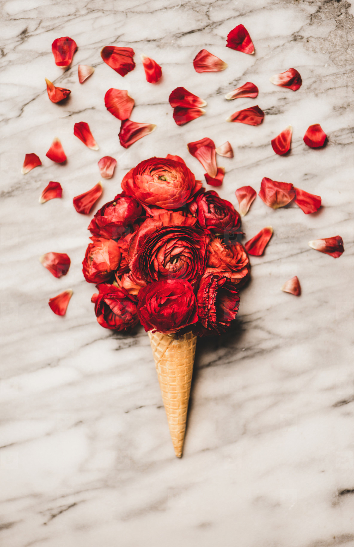 Waffle cone with scoop of ranunculus flowers over marble background