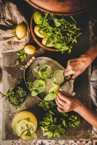 Woman decorating cold citrus lemonade with fresh mint leaves