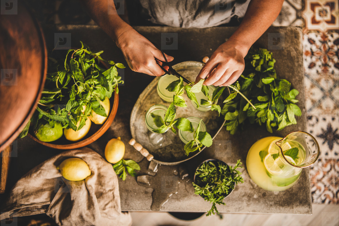 Woman decorating cold citrus homemade lemonade with fresh mint leaves