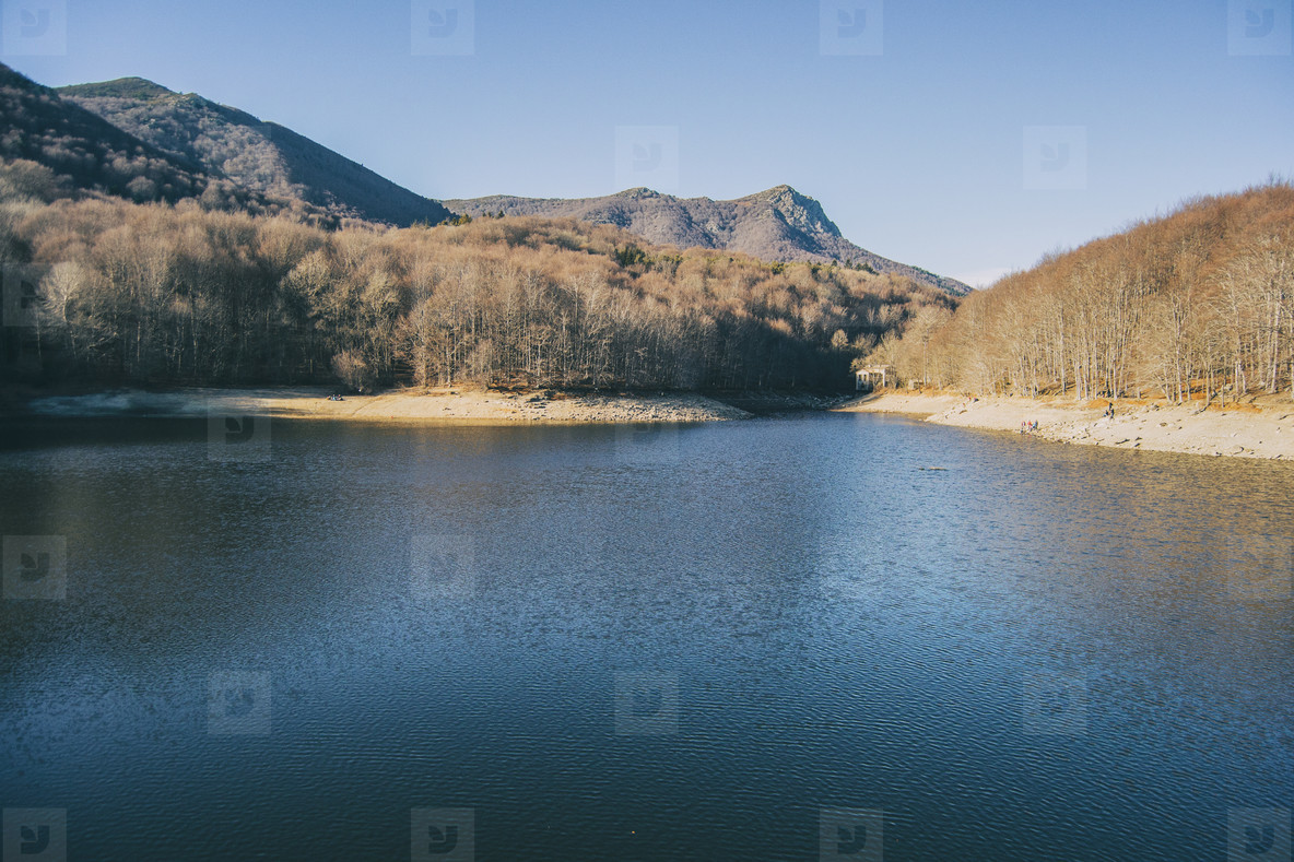 view of part of the santa fe swamp in winter located in the montseny mountains  catalonia