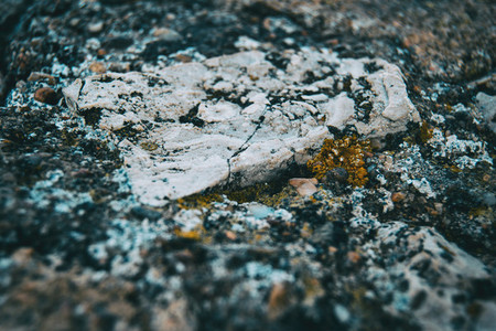texture of a rock with different colors for a background