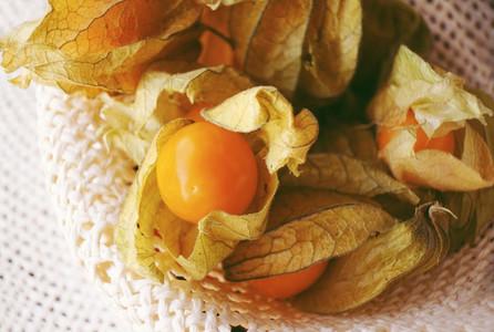Beautiful macro close up of a orange tasty fruit named physalis