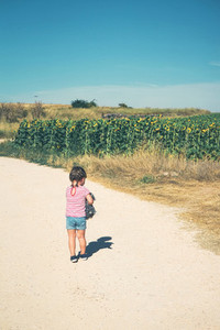 Back view of a litlle girl alone in a field of sunflowers