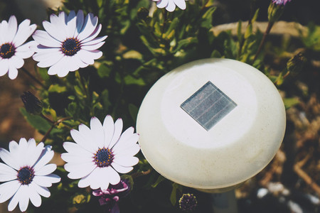 Little solar panel surrounded by flowers