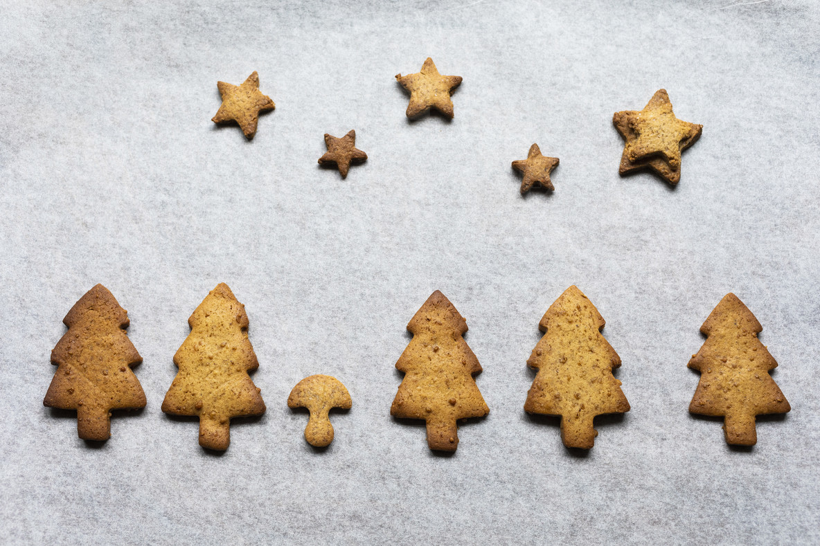 Gingerbread trees and stars on parchment paper