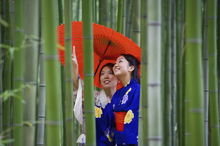 Beautiful young women in kimonos with parasol among bamboo