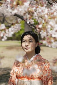 Beautiful serene young woman in kimono below cherry blossom tree