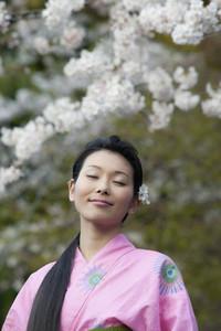 Beautiful serene young woman in kimono below cherry blossoms