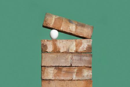 Egg between bricks on green background