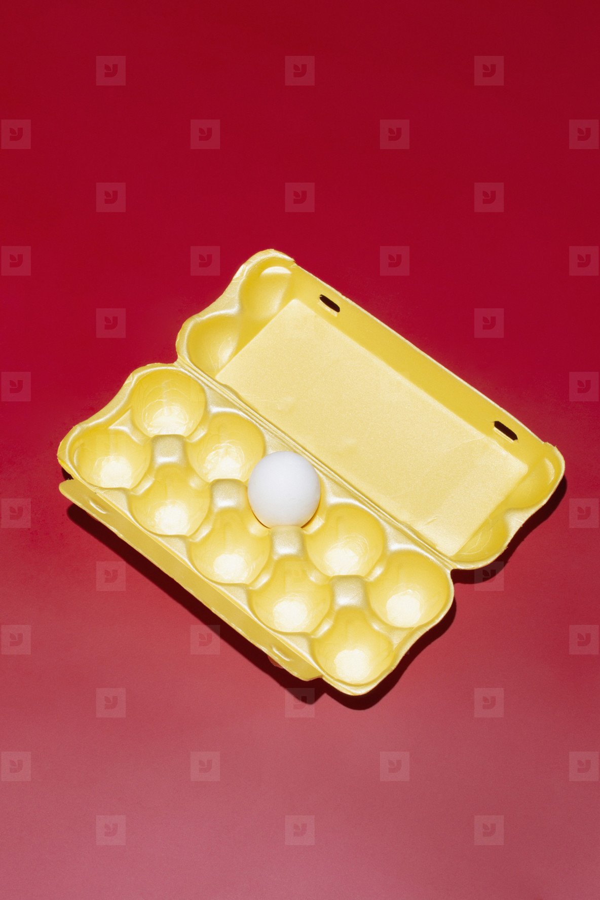 Single egg in polystyrene carton on red background