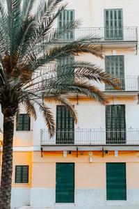 Palma  Mallorca Island  Spain