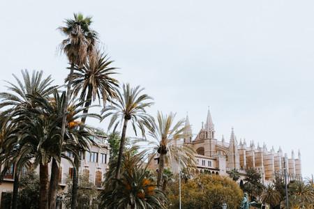 Palma City  Mallorca Island  Spain