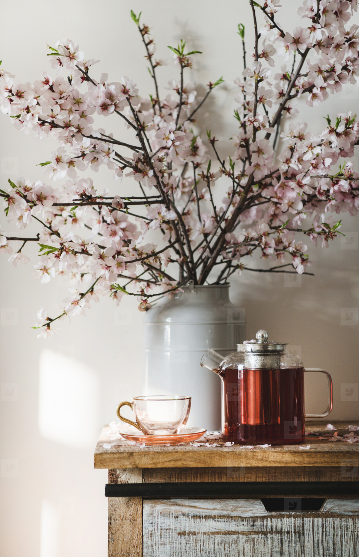 Black tea on wooden cupboard under blooming almond tree branches