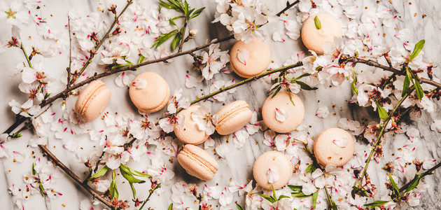 Flat lay of sweet macaron cookies and blossom flowers  wide composition